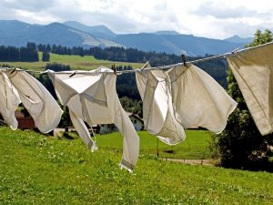 Washing on the line is not good for Summer Allergies and Hay-fever